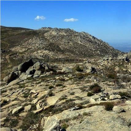 Monte S. Tiago - Folgosinho